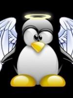 angel_linux