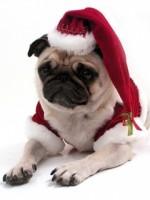 merry_christmas4