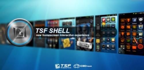 tsf-shell-642x314