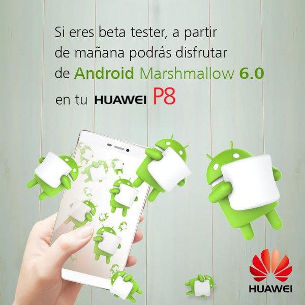 beta huawei